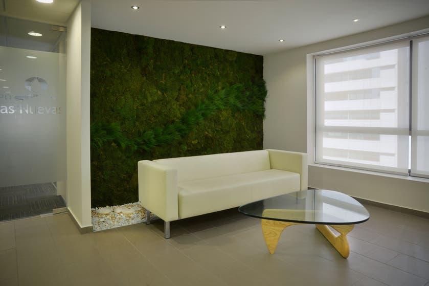 Muros verdes y jardines verticales la nacion - Muros verdes verticales ...