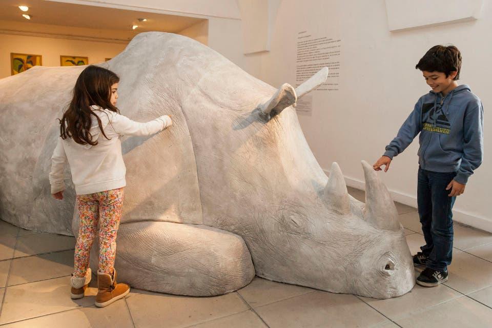 El rinoceronte gigante del Recoleta